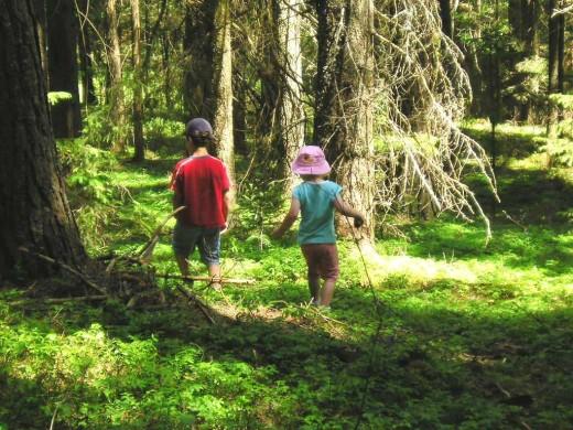 Kinder-Trettraktor Mitarbeit Landurlaub