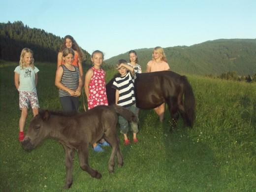 Pferde-reiten, Burg-Ruine, Frühstücks-Buffet, Ferienwohnungen