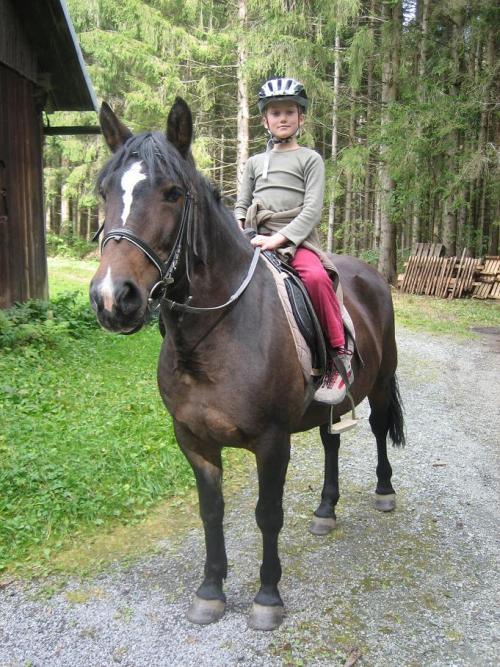pferde reiten spiele kostenlos
